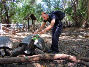 Zanzibar Prison Island Tartaruga Mattia