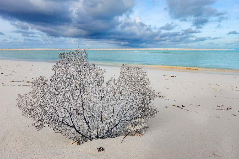 Cayo Largo spiaggia