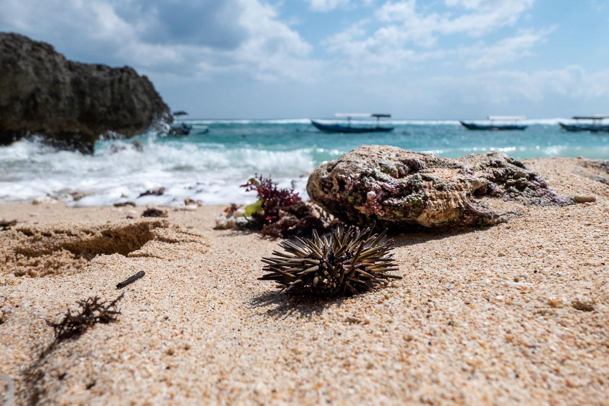 Le spiagge a Bali